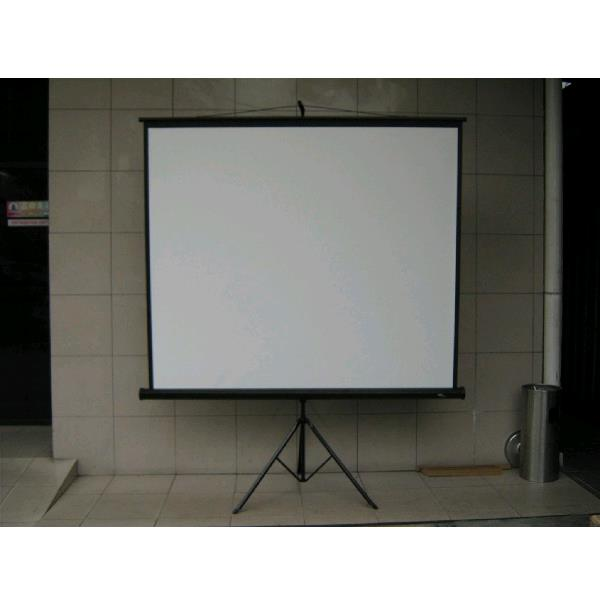 Where to find PROJECTOR SCREEN- 60  SQUARE in St. Petersburg
